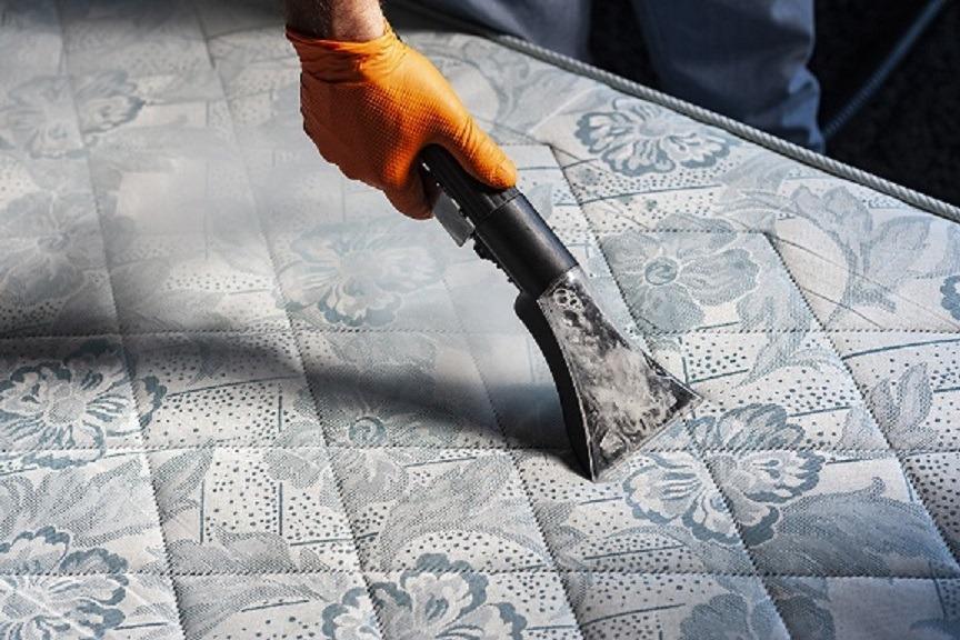 spalare curatare igienizare canapele saltele mochete auto cu aburi injectie extractie
